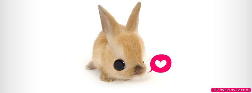 Bunny Loves You Facebook Covers More Animals Covers for Timeline