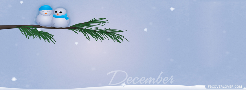 December Birds Cuddling Facebook Covers More Seasonal Covers for Timeline