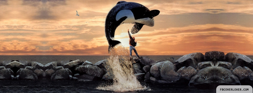 free willy facebook timeline profile covers