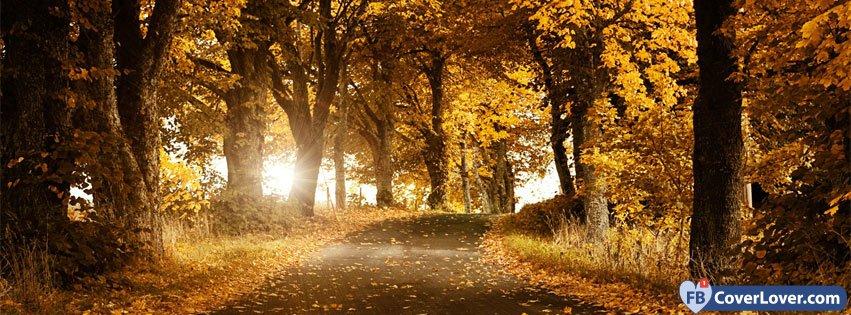 Autumn Forest 3