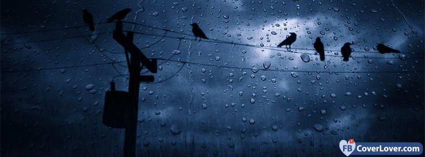 Crows And Rain Emo Goth Facebook Cover Maker