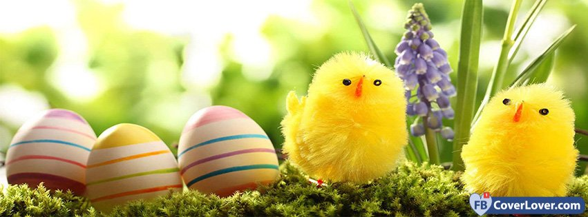 Happy Easter Cute Chickens