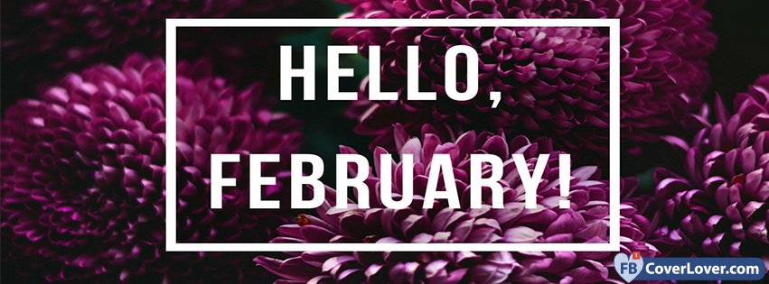 Hello February Purple Flowers