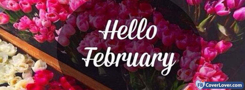 Hello February Flowers February Seasonal Facebook Cover Maker