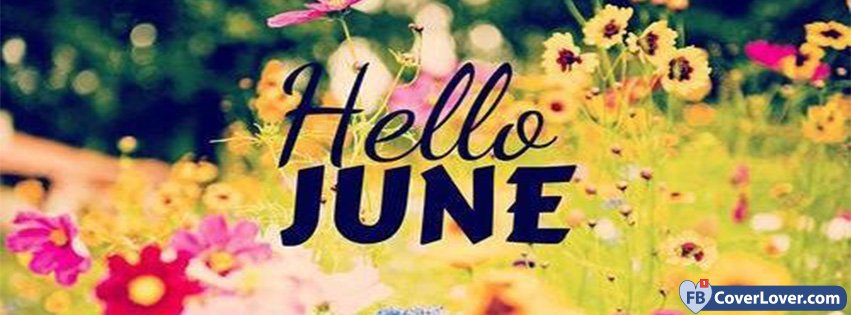 Hello June Flowers Field