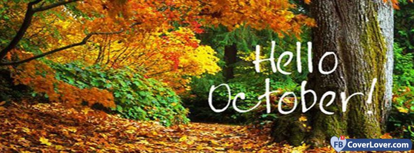Hello October Forest
