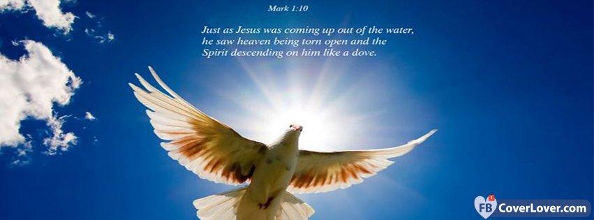 Mark 1 10