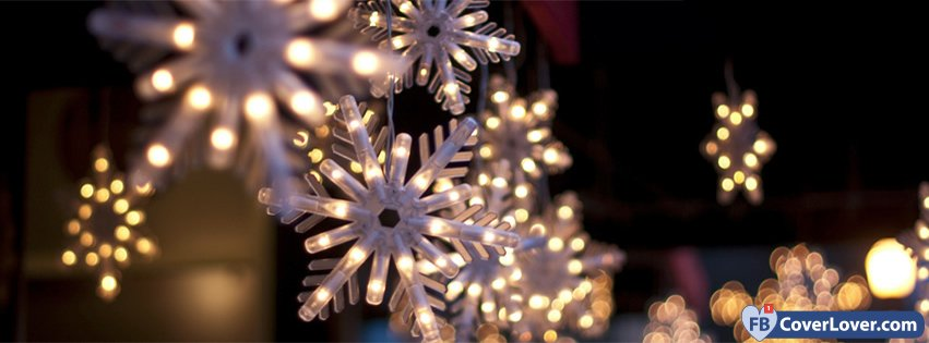 Snowflakes Lights Blue Sky And Flowers Nature And ...