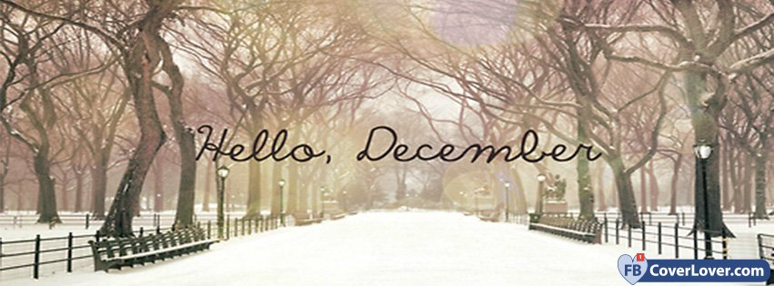 Hello December Snow And Light