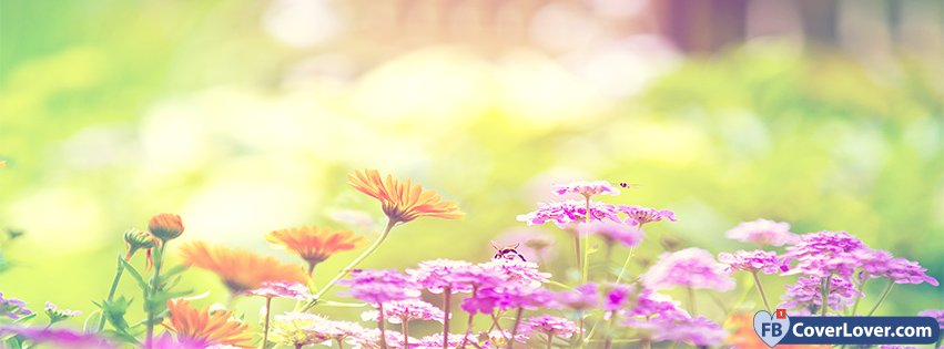 Spring Forest Flowers Seasonal Facebook Cover