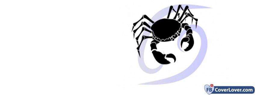 Zodiac Cancer Zodiac Sign