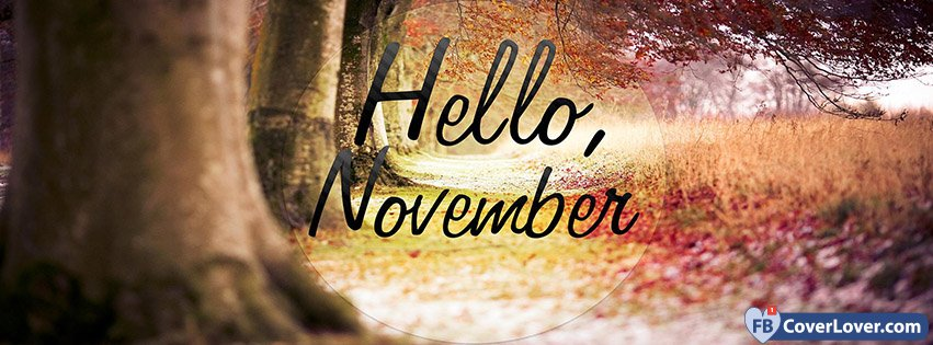 Hello November Forest View