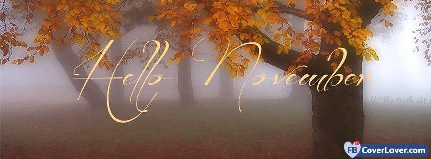 Hello November Woods