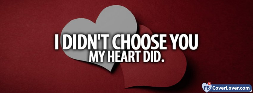 I Didnt Choose You My Heart Did