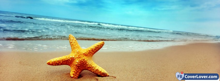 Summer Beach Starfish
