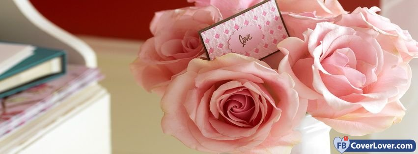 Valentines Day Gift Pink Roses