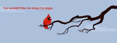 Angry Birds   Facebook Covers