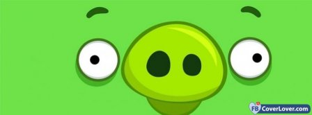 Angry Birds 15 Facebook Covers