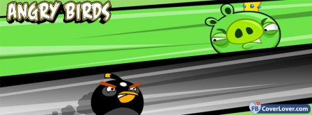 Angry Birds 9 Facebook Covers