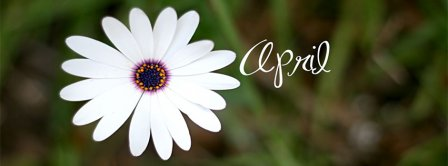 April Flower Facebook Covers