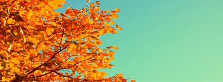 Autumn Colors Facebook Covers