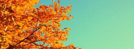 Autumn Colors Facebook Covers
