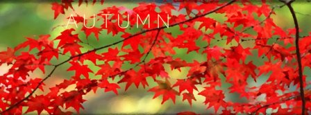 Autumn Facebook Covers