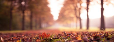 Autumn Forest 6 Facebook Covers