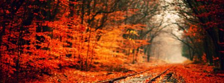Autumn Forest And Rails Facebook Covers