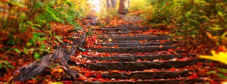 Autumn Forest Stairs Facebook Covers