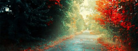 Autumn Forest Path Facebook Covers