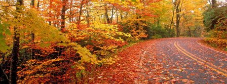 Autumn Road Facebook Covers