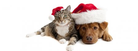 Cat And Dog With Christmas Hat Facebook Covers
