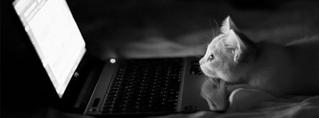 Cat Watching Computer Facebook Covers