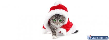 Christmas Cat Disguised  Facebook Covers