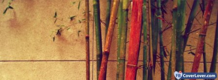 Colorful Bamboo  Facebook Covers