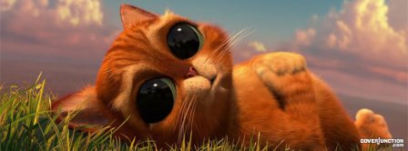 Cute Kitty Facebook Covers