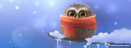 Cute Owl In The Winter Facebook Covers