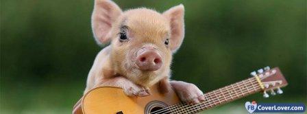 Cute Pig 2  Facebook Covers