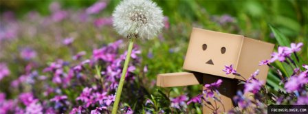 Danbo Danboards With Flower Facebook Covers