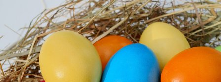 Easter Eggs Nest 2021 Facebook Covers
