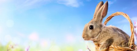 Easters Bunny Facebook Covers
