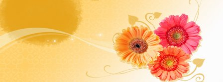 Flowers Composition  Facebook Covers