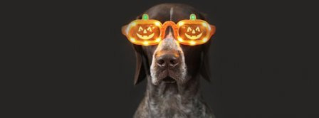 Cool Halloween Dog Facebook Covers