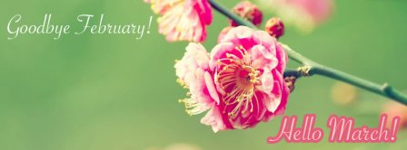 Goodbye February Hello March Facebook Covers