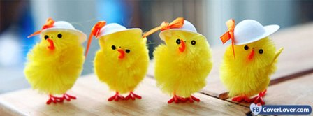 Happy Easters Funny Chickens Facebook Covers