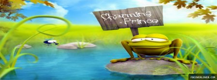 Happy Frog Facebook Covers