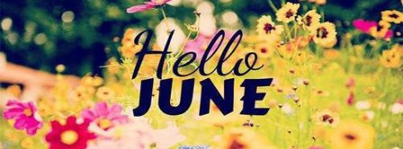 Hello June Flowers Field Facebook Covers