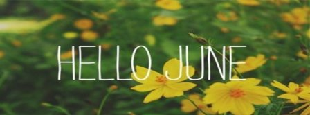 Hello June Daffodils Facebook Covers