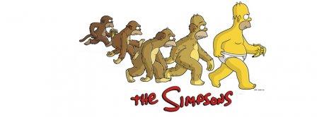 Homersapien Homer Simpson Evolution Facebook Covers